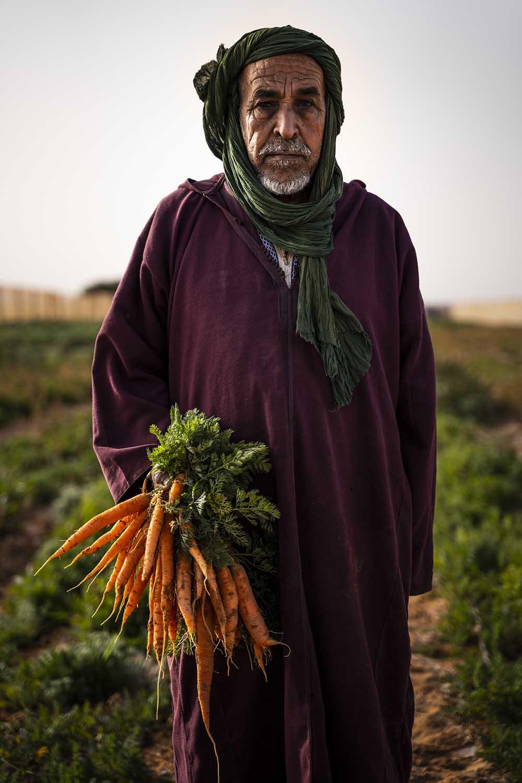 Campamentos Refugiados en el Sahara